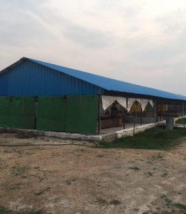 Village Herb Chicken Feed Mill